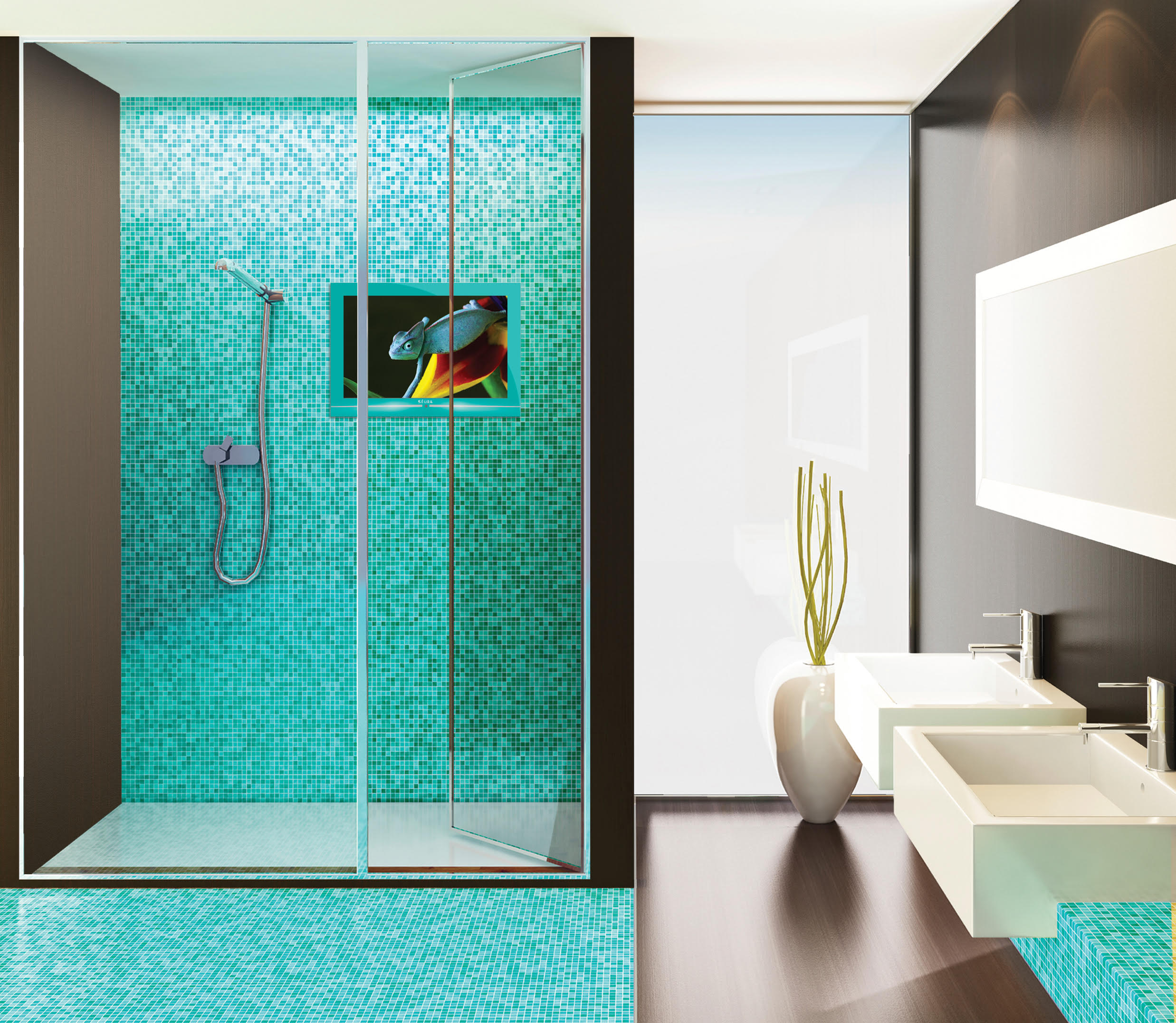 Res Tech Shower Television